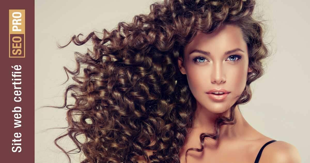 Certification SEO-PRO pour Mystixx coiffure