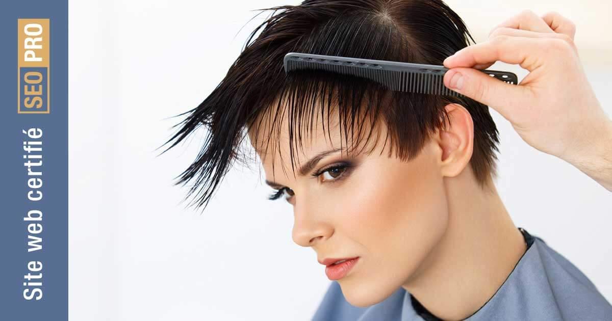 Effusion artiste coiffeur - certifié SEO-PRO